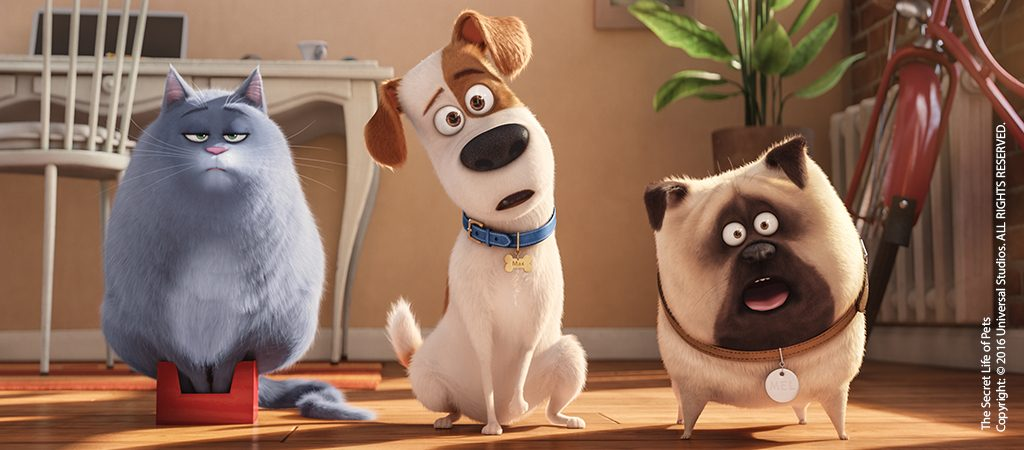 "(L to R) Fat cat Chloe (LAKE BELL), pampered terrier mix Max (LOUIS C.K.), and excitable pug Mel (BOBBY MOYNIHAN) in Illumination Entertainment and Universal Pictures' ""The Secret Life of Pets,"" a comedy about the lives our pets lead after we leave for work or school each day."